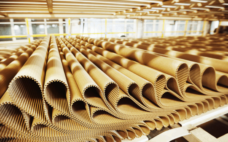 Cardboard Prodution from Pulp + Paper Processing
